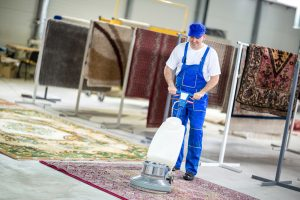 area rug deep cleaning demo
